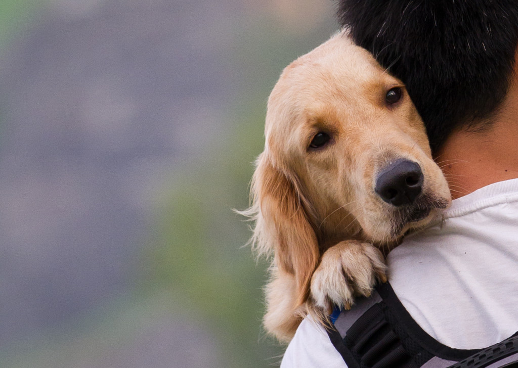 Hugging pet dog